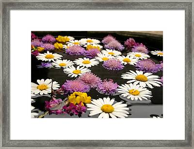 Wildflowers On Water Framed Print by Emanuel Tanjala