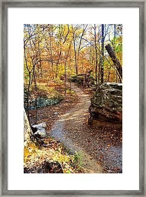 Winding Trail Framed Print by Marty Koch