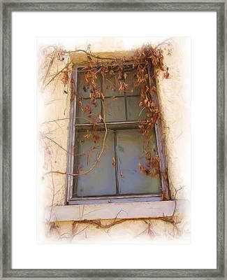 Window In Time Framed Print by FeVa  Fotos
