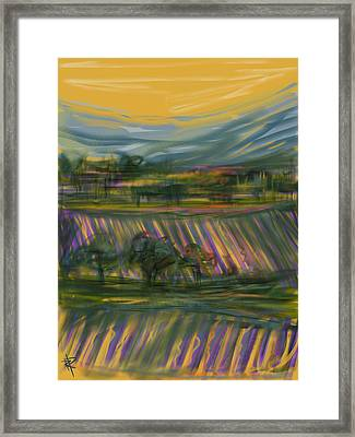 Wine Country Framed Print by Russell Pierce