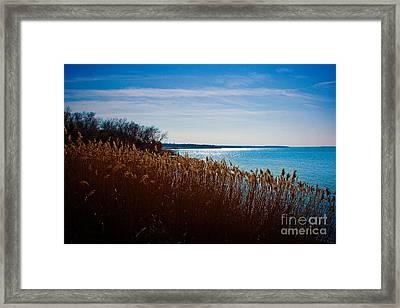 Winter Breeze Framed Print by Lisa Holmgreen