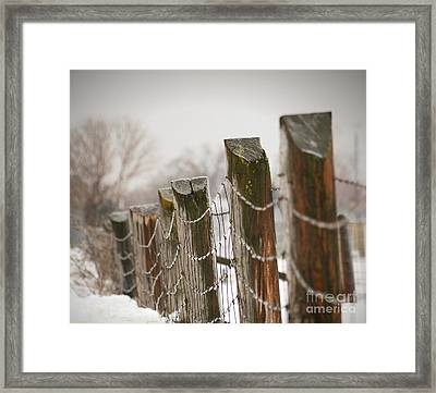 Winter Fence Framed Print by Sandra Cunningham
