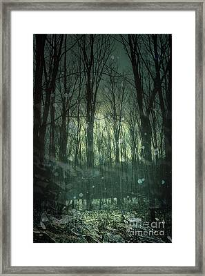 Winter Forest At Twilight Framed Print by Sandra Cunningham