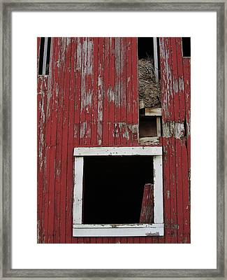 Winter Hay Framed Print by Todd Sherlock