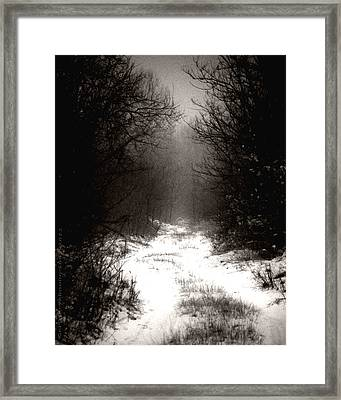 Winter IIi Framed Print by Mimulux patricia no