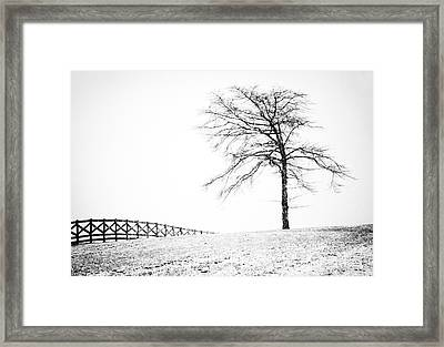 Winter In Black And White Framed Print by David Waldrop