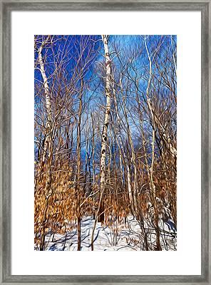 Winter Landscape I Framed Print by Celso Bressan