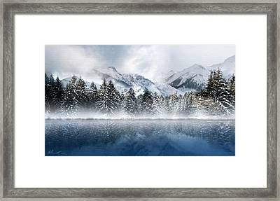 Winter Mist Framed Print by Svetlana Sewell