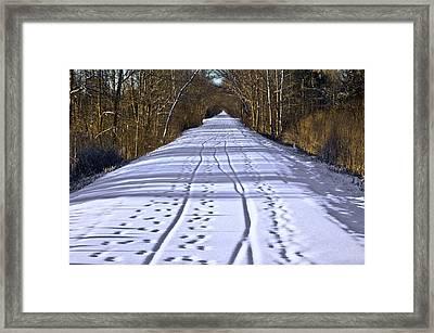 Winter Morning On Macomb Orchard Trail Framed Print by LeeAnn McLaneGoetz McLaneGoetzStudioLLCcom