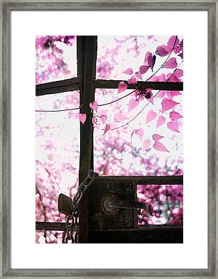 Winter Morning Framed Print by Stelios Kleanthous