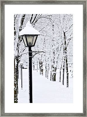 Winter Park Framed Print by Elena Elisseeva