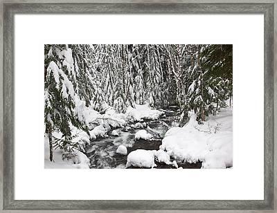 Winter Snow Along Still Creek In Mt Framed Print by Craig Tuttle