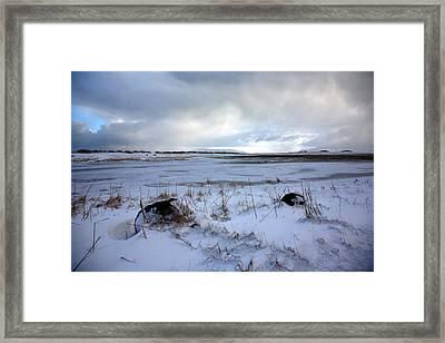 Winter Framed Print by Vala O