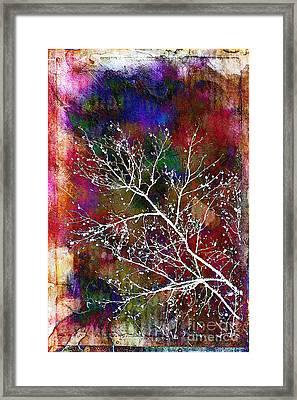 Winter Wishes Framed Print by Judi Bagwell