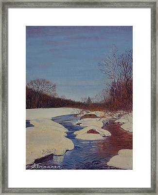 Winter Wonderland Framed Print by Frank Strasser