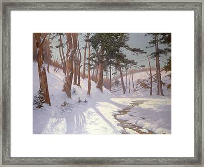 Winter Woodland With A Stream Framed Print by James MacLaren