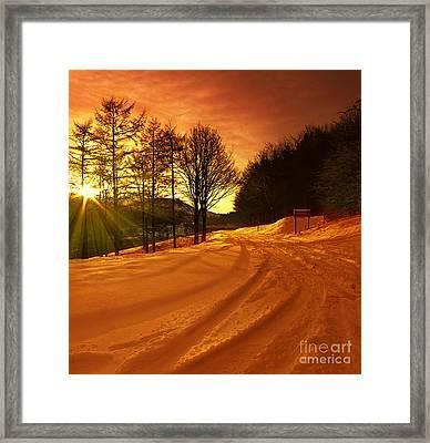 Winter World Framed Print by Nigel Hatton