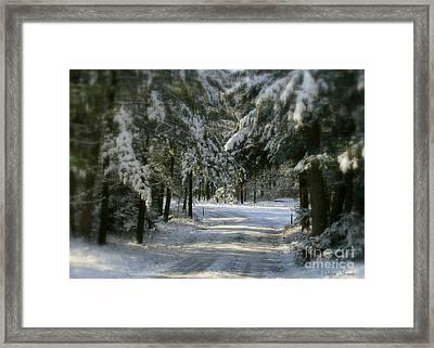 Winter's Tranquility Framed Print by Debra Straub
