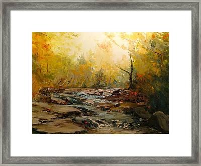 Wistful Waters Framed Print by Sarah Jane Conklin