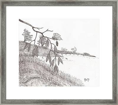 With New Wings... - Sketch Framed Print by Robert Meszaros