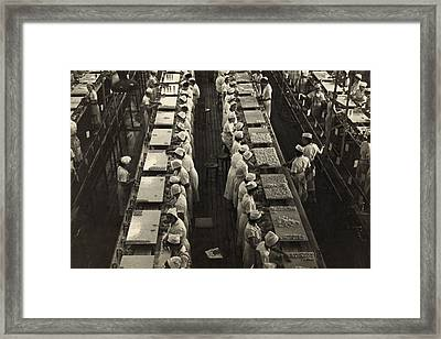 Women Working In A Grapefruit Canning Framed Print by Everett