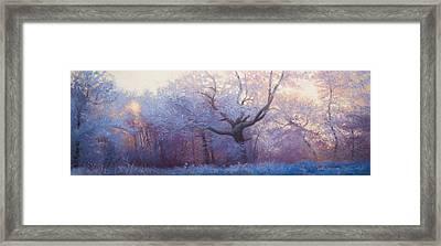 Wonderland Framed Print by Jonathan Howe