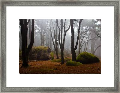 Wonderland Framed Print by Jorge Maia