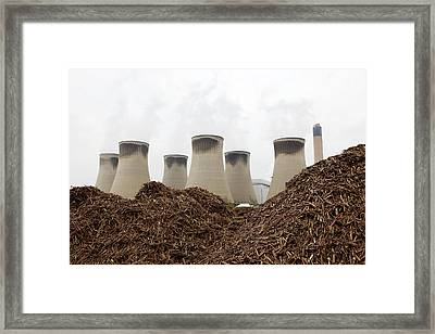 Wood Fuel For Power Station Framed Print by Colin Cuthbert