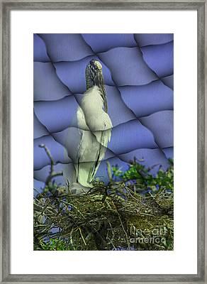 Wood Stork In Lattice Framed Print by Deborah Benoit