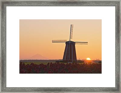 Woodburn, Oregon, United States Of Framed Print by Dan Sherwood