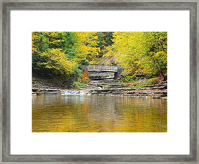 Wooden Bridge And Yellow Leaves Framed Print by Joshua House