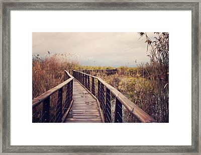 Wooden Path On The Lake Framed Print by Copyright Anna Nemoy(Xaomena)