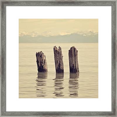 Wooden Piles Framed Print by Joana Kruse