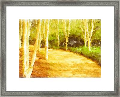 Woodland Painting Framed Print by Tom Gowanlock