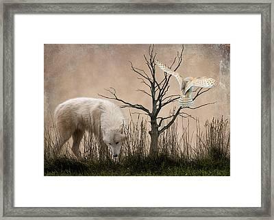 Woodland Wolf Framed Print by Sharon Lisa Clarke
