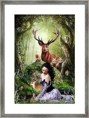 Woodland Wonders Framed Print by Julie L Hoddinott
