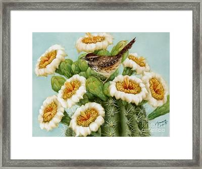 Wren And Saguaro Blossoms  Framed Print by Summer Celeste