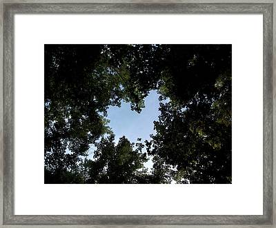Written On The Wind  Framed Print by Tammy Cantrell