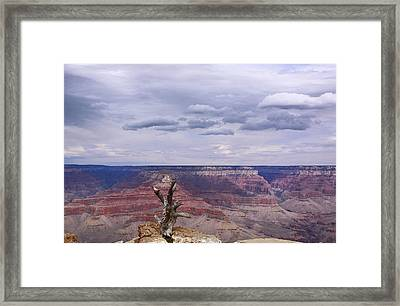 Yaki Point Framed Print by Viktor Savchenko
