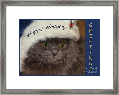 Yankee Cat Framed Print by Joann Vitali