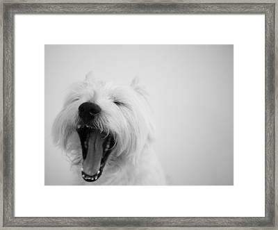Yawn Framed Print by Fion Ngan @ fill in my blanks