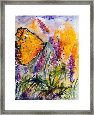 Yellow Butterfly On Lupines Framed Print by Ginette Callaway