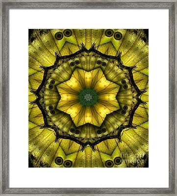 Yellow Butterfly Wing Kaleidoscope Mandala Framed Print by Janeen Wassink Searles