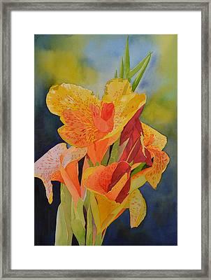 Yellow Canna Framed Print by Cynthia Sexton