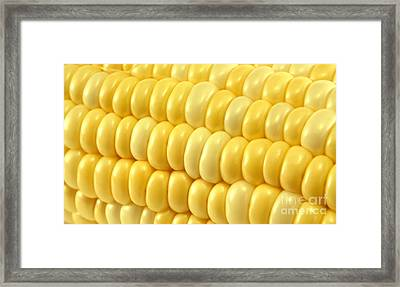 Yellow Corn Macro Framed Print by Blink Images