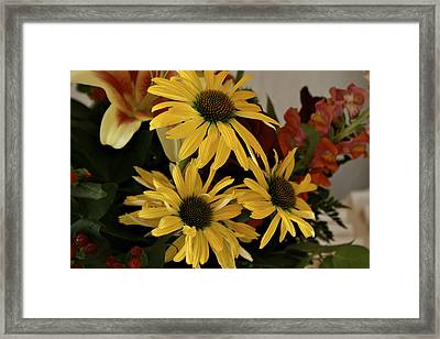 Yellow Daisies Framed Print by Richard Gregurich