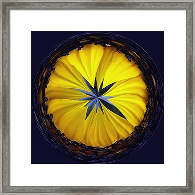 Yellow Flower 2 Framed Print by Skip Nall
