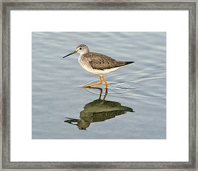 Yellow Leg Reflection Framed Print by Paulette Thomas