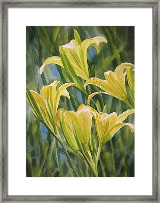 Yellow Lilies Framed Print by Sharon Freeman