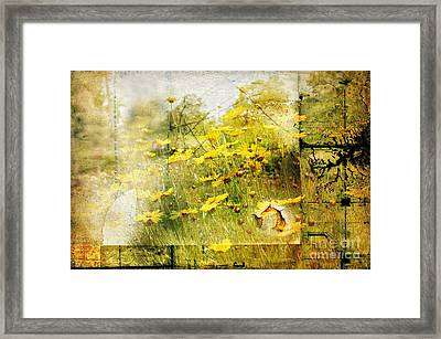 Yellow Wildflower Field Abstract Framed Print by Elaine Manley
